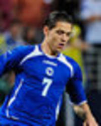 everton new boy mo besic ready for premier league challenge